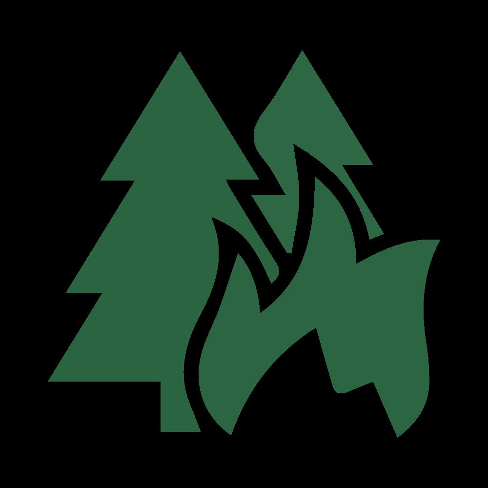 Wildfire Prevention Arborist Services